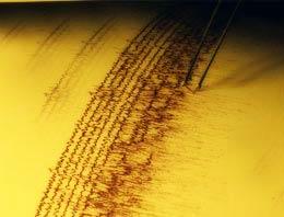 Yeni Zelanda yeni yıla depremle girdi