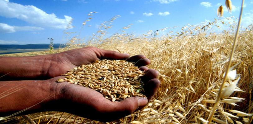"""""""Devlet destekli tarım sigortasına olan ilgi her geçen gün artıyor"""""""