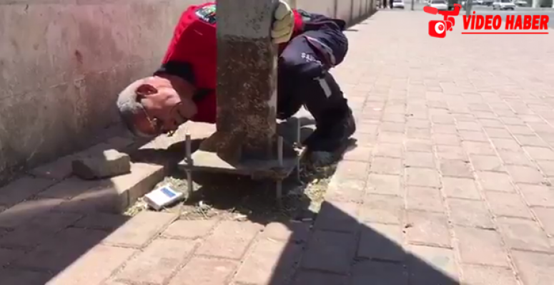 Sıkışan Kediyi İtfaiye Kurtardı