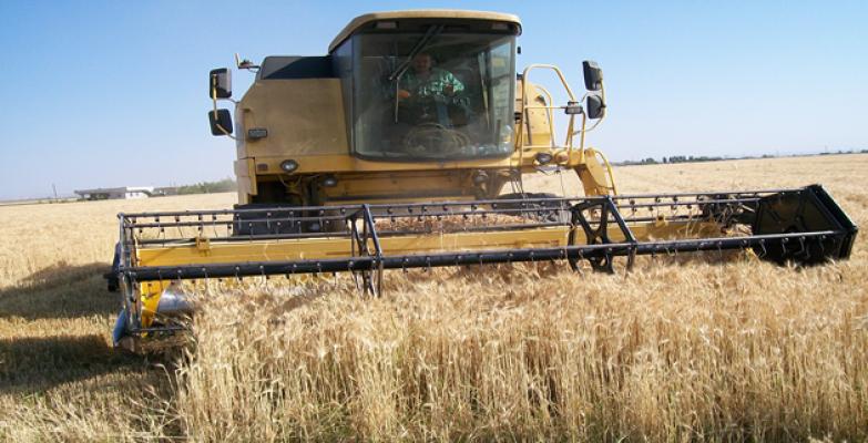 Urfa'da  ilk hasat yapıldı