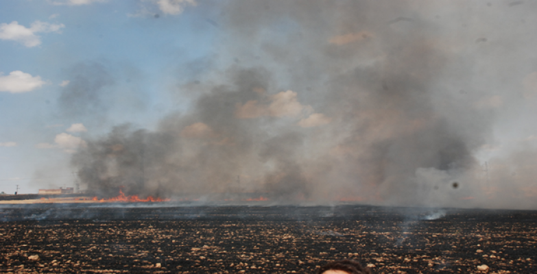 Urfa'yı dumanlar kapladı