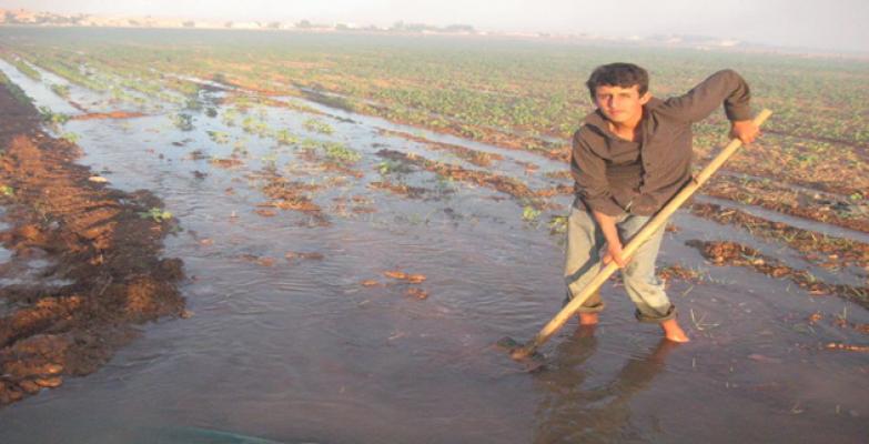 Fakıababa'dan Çiftçilere Müjde