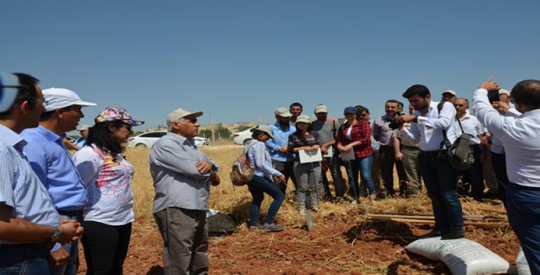 HRÜ'den Örnek Çalışma, Öğrencilere 1 Dekarlık Arazi Dağıtıldı