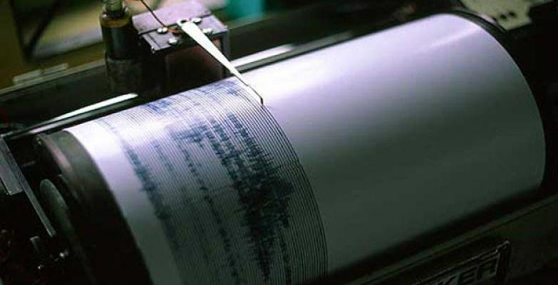 Bodrum'da Korkutan Depremler! 4.6 ve 4.2 ile Sallandı