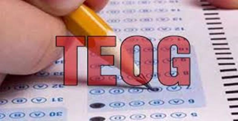 TEOG 2017 yerleştirme sonuçları açıklandı