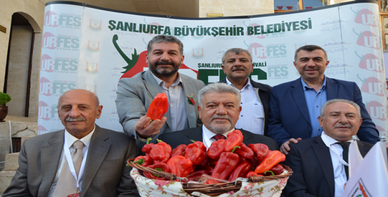 Urfa'da Çiğköfte ve İsot Yarışması Yapıldı