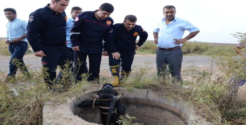Urfa'da İnek Kurtarma Operasyonu