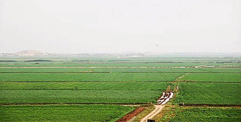 Bakan Fakıbaba'nın Büyük Ovaların Koruma Alanı Olarak Belirlenmesi Açıklaması