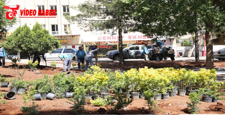 Haliliye Belediyesi, İlçedeki Park Sayısını Arttırıyor