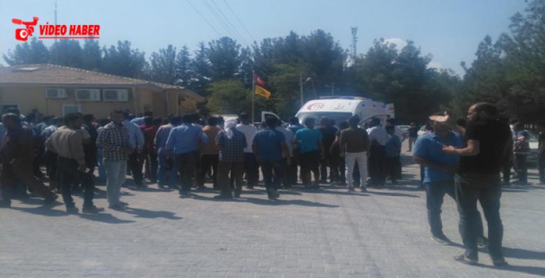 Harran'da İki Grup Arasında Kavga, 1 Ölü