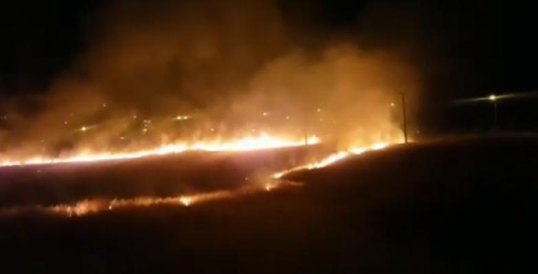 Urfa'da Otlak Alanlarda Yangın
