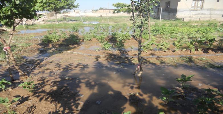Tarladan Akan Sular Köye Kadar Ulaştı
