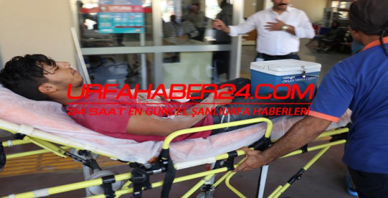 Urfa'da İş Kazası
