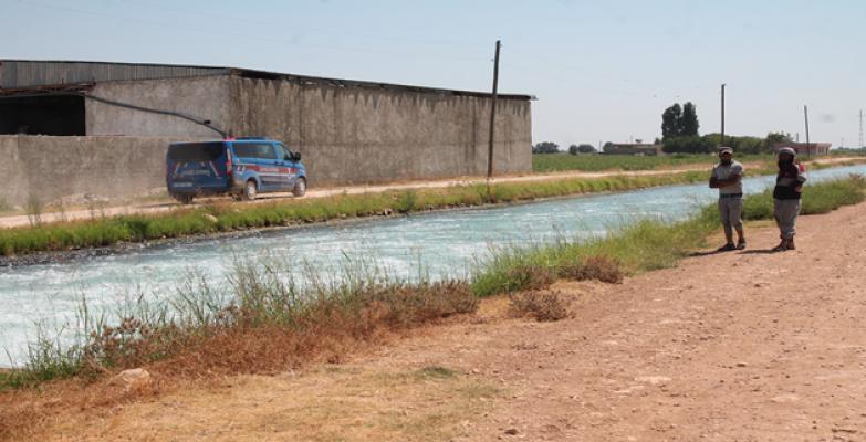 Şanlıurfa'da Suya Giren Genç Kayboldu