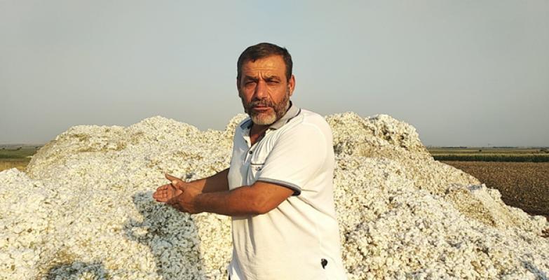 """Urfalı Çiftçi Cumhurbaşkanına Seslendi; """"Tayyip Baba Ne Yapak"""""""
