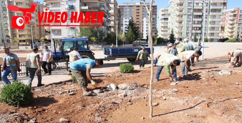 Haliliye'de Yeni Parkların Ağaçlandırılması Sürüyor