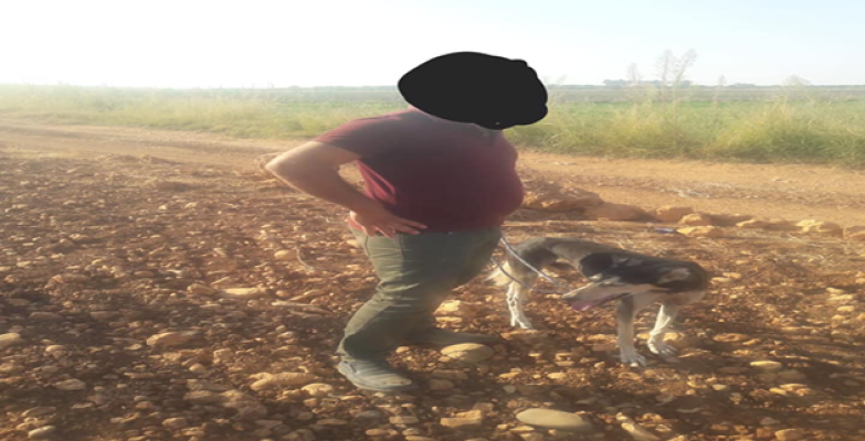 Urfa'da 'kaçak avcılara' ceza