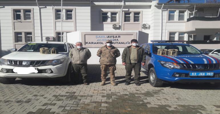 Bozova'da 4 adet kınalı keklik ele geçirdi.