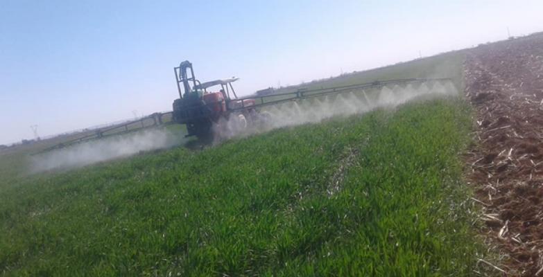 Şanlıurfa'da ekinler  hastalıklara ve yabani otlara karşı ilaçlanıyor