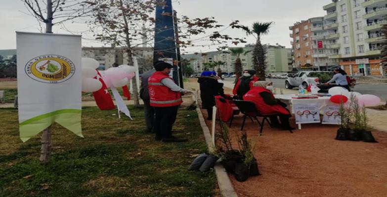 Birecik'te 8 Mart Kadınlar Günü nedeniyle fidan dağıttı