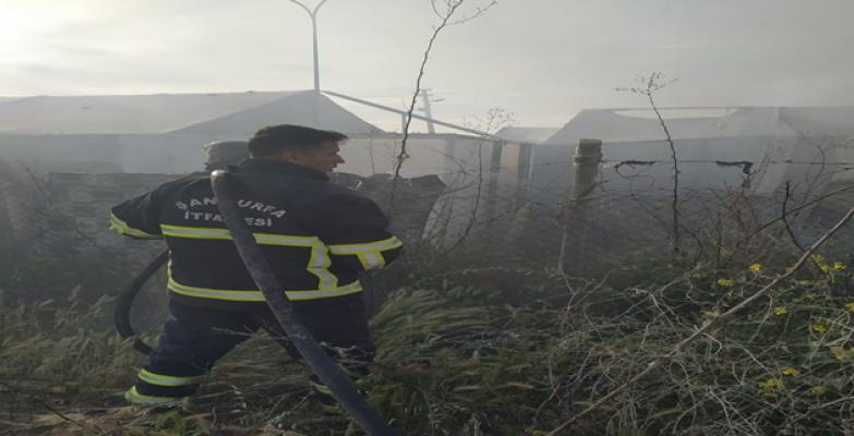 Urfa'da yangın paniğe neden oldu