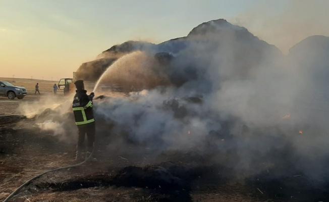 Ceylanpınar'da saman balyası yüklü TIR, alev alev yandı