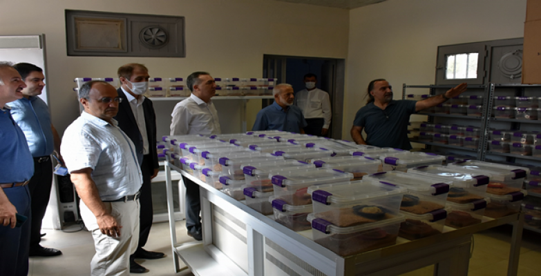 Harran Üniversitesi'ndeki Akrep Merkezine Açık Alan Bahçesi Yapıldı