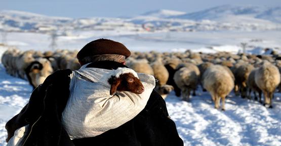 Anadolu Ajansından  Yılın Fotoğrafı