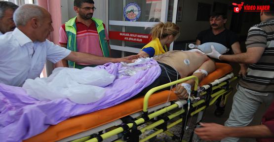 Ceylanpınar'da 1 kişi daha vurularak öldürüldü