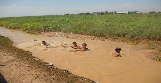Çocuklar çamurlu suda serinliyor