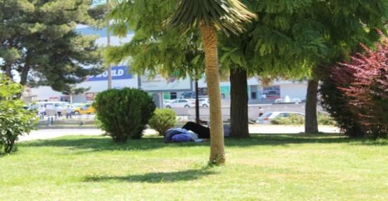Dinlenen Vatandaşlar Uyuyakalıyor
