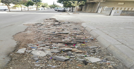 Eyyübiye'de tozlu yol çilesi