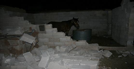 Fırtına köylerde etkili oldu