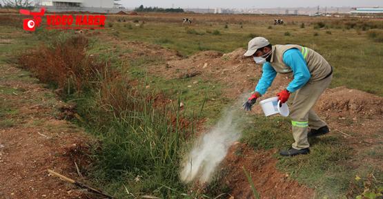 Haliliye'de Larva Mücadelesi Kırsal Mahallelerde De Devam Ediyor