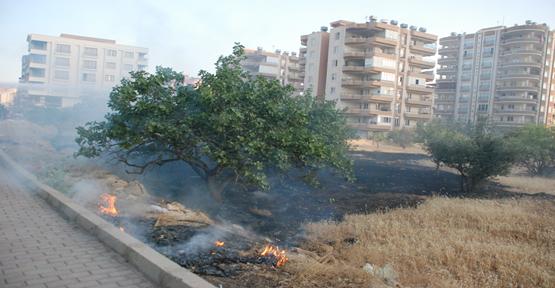 Karaköprü'de yangın