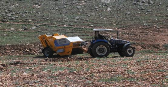 Kıraç topraklar temizleniyor