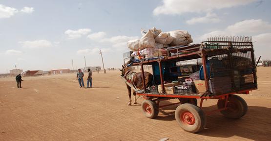 Kobani sınırda seyyar market