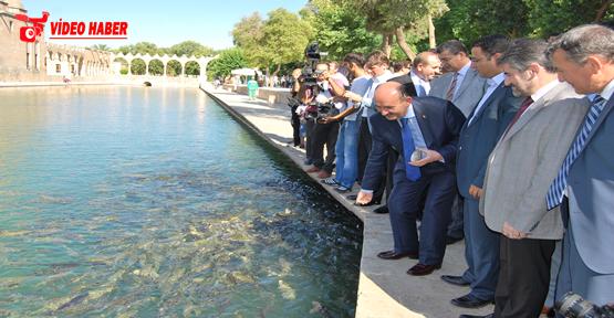 Sağlık Bakanı Balıklara Yem attı