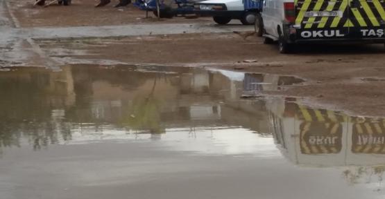 Şanlıurfa'da fırtına ve yağmur etkili oldu