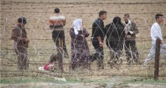 Suriye sınırda yığılma başladı