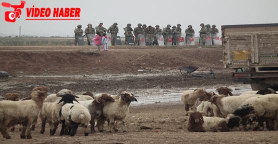 Suriye Sınırında Büyük Operasyon