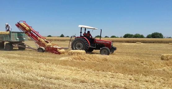 Tarım arazilerine tapu müjdesi