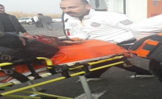 Urfa'da kaza, 1 ölü, 2 yaralı