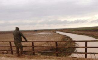 Akçakale Ceylanpınar Yolunda Zırhlı Araç Sele Kapıldı, 2 Asker Şehit