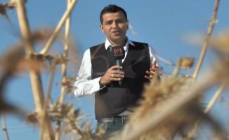 Urfalı Gazeteci Ortakaya'ya ödül