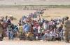 3 Milyon Suriyeli Türkiye'ye Geliyor