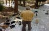 Urfalı vatandaş kendini sokak kedilerine adadı