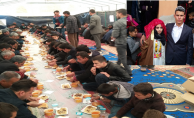 Urfa'da muhteşem aşiret düğünü