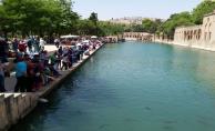 Şanlıurfa'ya turist yoğunluğu