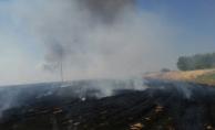 Urfa'da Anız Yangını